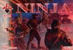 RB72011 Ninja